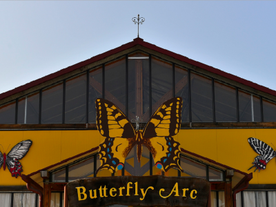 Butterfly Arc – House of Butterflies 2 km far from our hotel!