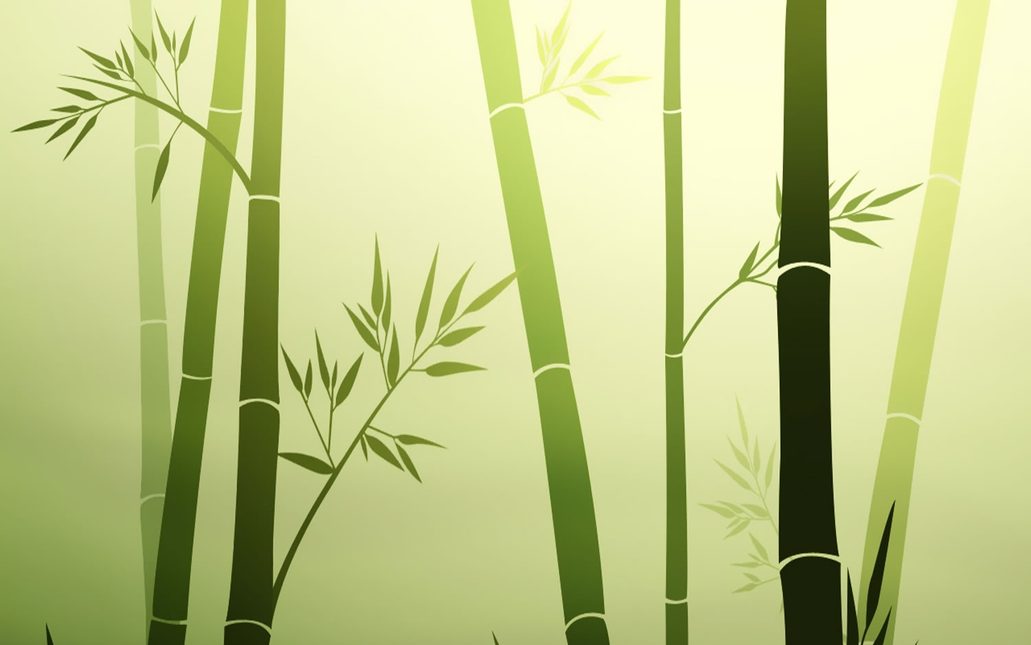 Bamboo Wallpaper 24